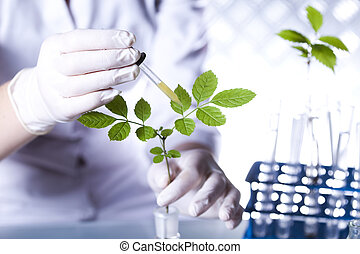Scientist examine plants