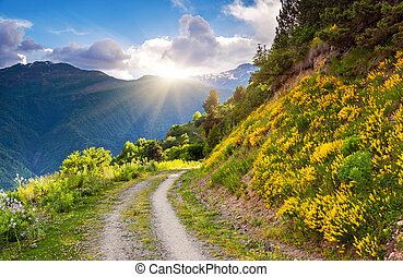 mountain landscape - Beautiful view of alpine meadows Upper...
