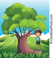 A boy standing on a root of a tree - Illustration of a boy...