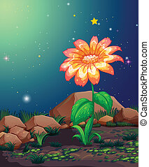 A beautiful blooming flower - Illustration of a beautiful...