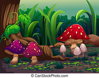 Giant mushrooms in the forest - Illustration of the giant...