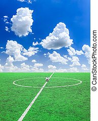 soccer ball on green grass   - soccer ball on green grass