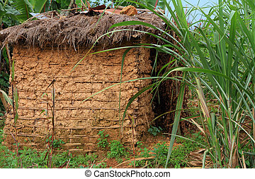 Mud Hut Home - A small mud hut among tropical jungle grasses
