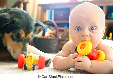 Baby and Dog Playing with Toys - a baby boy is laying on the...