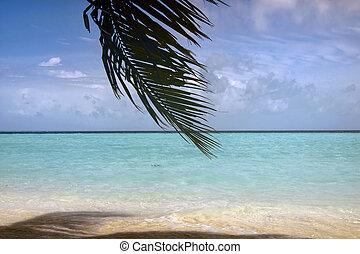 Scenic view of Maldives