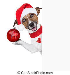 hello goodbye christmas dog - christmas dog as santa behind...