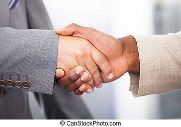 Two Businessmen Shaking Hand - Close-up Of A Two Businessmen...