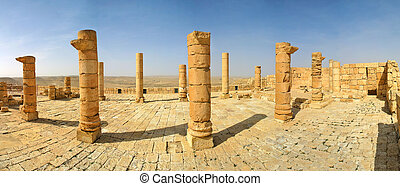 Ancient ruins of town of Avdat in Israel. - Columns and...
