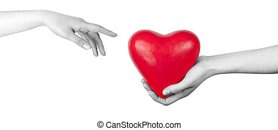 Health insurance or love concept isolated