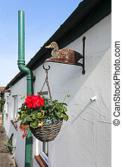 Hanging Flower Baskets - Hanging flower baskets and ducks