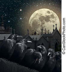 Night of the crows - Halloween night with crows, old...