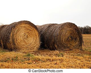 Hay bales ready for use.