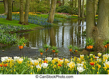 spring garden Keukenhof, Netherlands - Colorful river...