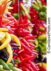 Yellow and Red Hot Peppers - Many types of yellow and red...