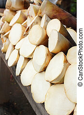 Bamboo shoots background - texture