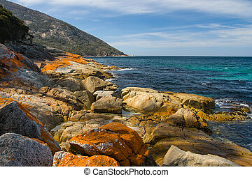 Freycinet beach - A beach in a remote part of the Freycinet...