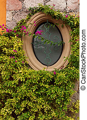 wall covered by green plant and oval window