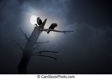 Night of crows - Full moon in an overcast night with crows...