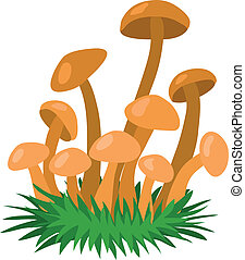 Honey fungus - a fungus that grows in the forest