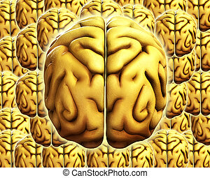 Brain Background 5 - A background made out of human brains,...