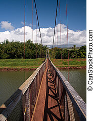 Hanapepe Swinging Bridge in Kauai - View down the walkway of...