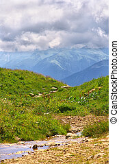 Green Meadow with flowers and water Stream and Mountains on Background Landscape with Thunder Clouds