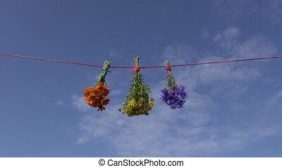 three medical herb flowers bunch on string and ky background...