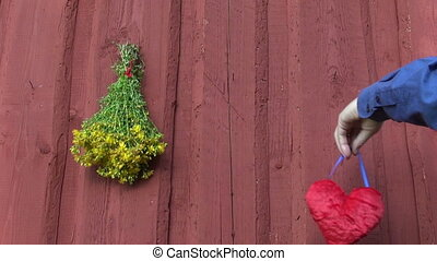 hanging red heart symbol and tutsan herb bunch on wooden...