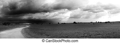 Panoramic nature reserve - Black and White Panorama of a...
