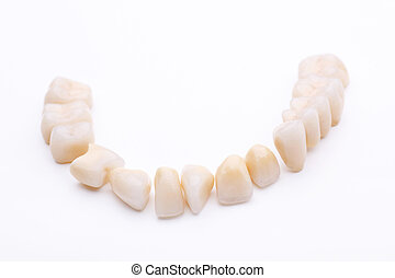 Complete lower dentition of prosthetic teeth isolated on a...