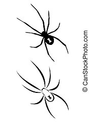 Black widow spider - A Black widow spider tribal tattoo