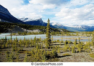 norte, Saskatchewan, río, canadiense, Rockies,...