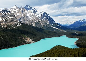 Peyto, lago, canadiense, Rockies, Canadá