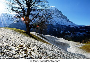 Eiger from snowy Grindenwald,switzerland - Eiger viewed from...