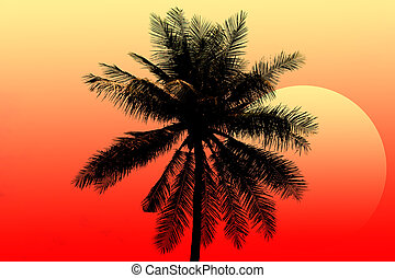 Coconut tree with Beautiful sunset.