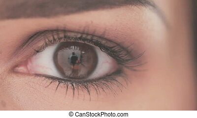 Eye of Young Woman With Natural Mak - Close Up Shoot on Eye...