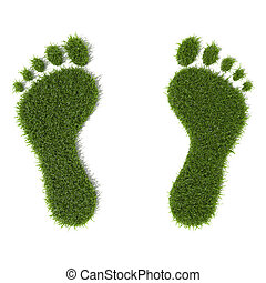 Grass footprint - Green grass growing footprints