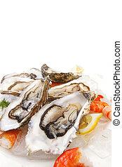 Fresh seafood on ice macro