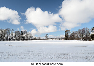 winter landscape, a field covered with snow, clouds in the...