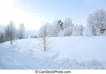 Winter landscape at Kiruna Lapland Sweden