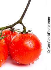 fresh red tomatoes - Close up of fresh red tomatoes