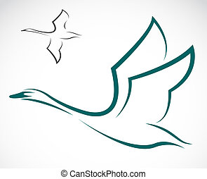 Vector image of swans on a white background