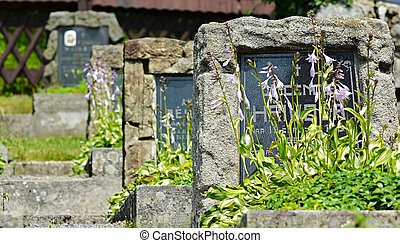 Stone graves with wild flowers