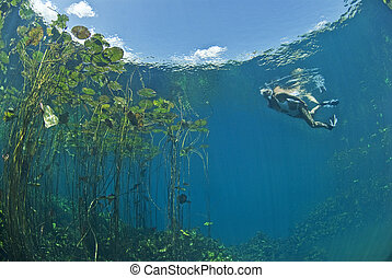 Swimming underwater diver - Freediver underwater at Marico...