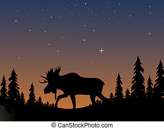 Moose Silhouette - Moose silhouetted against an evening...