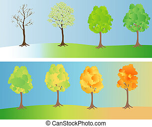 Tree at different seasons - A tree depicted at different...