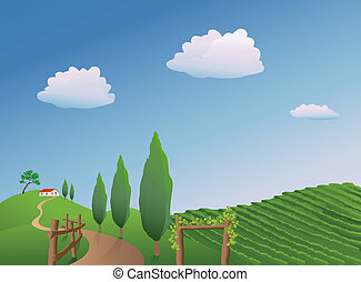 Vineyard Landscape - illustration of a vineyard in the...