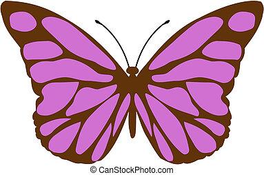 Butterfly - Siproeta stelenes - malalachite butterfly...