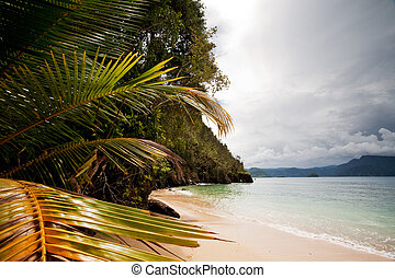 Tropical Beach - A tropical secluded beach