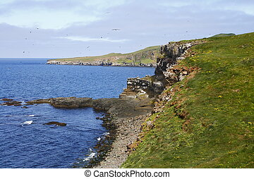 Grimsey - The island of Grimsey is located on the Arctic...